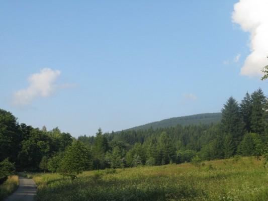 """Focena cca 2 km od železniční stanice v Branné, v údolí říčky Branná (směr na Ostružnou). (50°9'53.509""""N, 17°1'52.001""""E)"""
