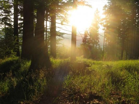 """Další fotka ze stejného místa, už bylo docela pozdě a začínalo zapadat sluníčko, do cíle, kde jsem chtěl nocovat, to bylo cca ještě 2 km a 150 výškových metrů. (50°10'23.661""""N, 17°3'51.059""""E)"""